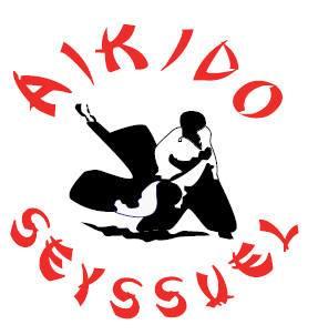 Aïkido, Spéciale Journée des Femmes